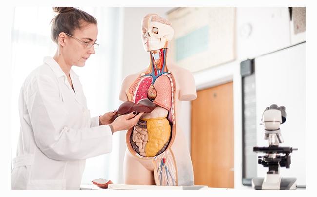 Mách bạn: 2 cách điều trị viêm gan B hiệu quả nhất