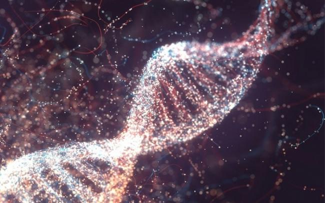 Chỉnh sửa gene sắp được thử nghiệm trên con người lần đầu tiên để điều trị mù lòa