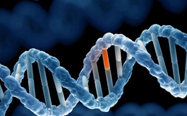 Gen sinh ung thư mới được phát hiện