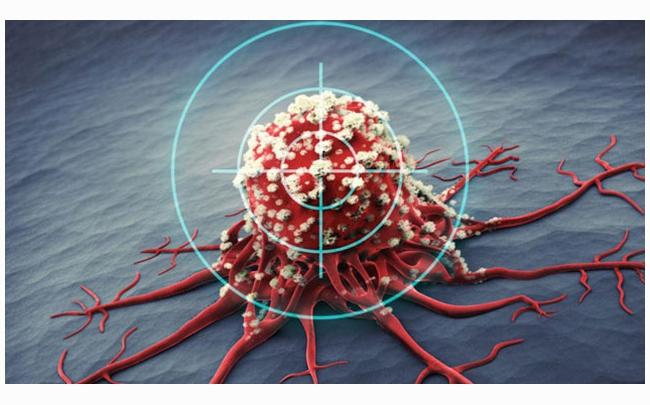 Một loại thuốc nhắm đích mới có thể thu nhỏ 67% khối u ung thư trên người
