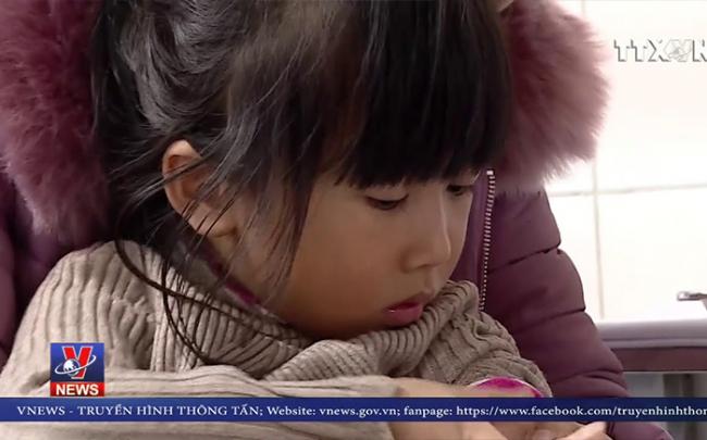 [Video] Dừng lấy máu xét nghiệm sán lợn cho trẻ em tại Bắc Ninh