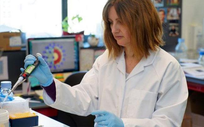 Virus corona: Bao lâu nữa thì có vaccine hay thuốc điều trị?